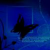 General - butterfly
