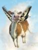 Ксения: корова