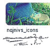 najnivs_icons