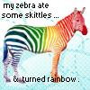 napn_zebra