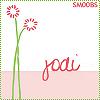 jodi // pink daisies