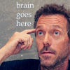 Welcome to Ant Country: House brain