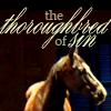 badhorse