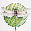 dragonfly heli