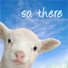 Chili the Sheep: So there