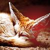 anna_semirol userpic