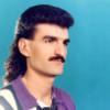 Hoddle Mustaches