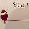 salut bird