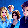 Twilight // The Cullens