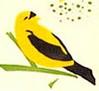 paleblueyes userpic