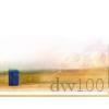 dw100