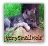 smallwolf