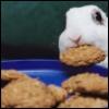Laura: cookie