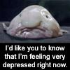 drbunsen: sadblobfish