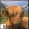 Scotland - EMO