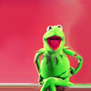 kermit // this is why I'm hot