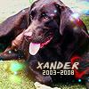 Xander 2