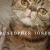 bustopher jones | my beautiful boy