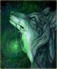 gentlewolff