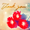 sil_8306: stock_thank you with red flowers