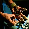 Lord Anubis [userpic]
