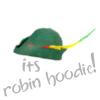 robin hoodie