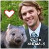 chase wombat