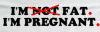 Pregnant Bumper Sticker