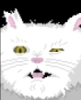 Lord Taco-Puss