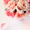 scarletwilight userpic