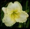 okalima userpic