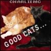 good cats