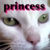 princessthecat userpic