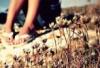 sunshinebabes userpic