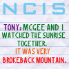 Nicole: Tony and McGee - Brokebacking it