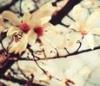 clairebear02 userpic