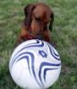 Мячик и Эмма