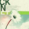 roslinforever: White Flower