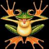 darkfrog24 userpic