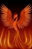 phoenix awoken