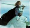 Рыцарь белого льва