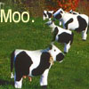 That's Upsilion Seven Upsilion to you: mooicon