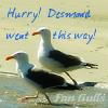 desmond-fangulls