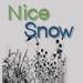 nicesnow userpic