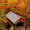 autumn bridge by nomnomicons