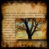 Forest - Parchment