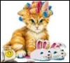 rocco_kitty userpic