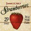 Amanda: Strawberries