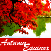 leaves, autumn, autumnequinox, fall