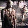 zombie_safari userpic